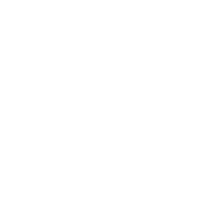 Turbo Service International